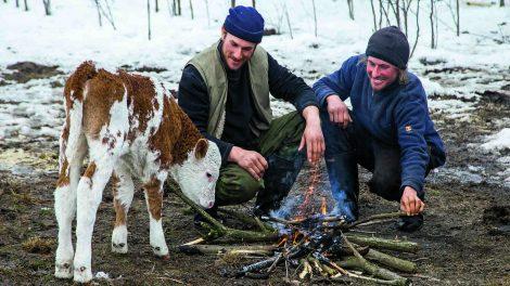 364 nap a szabad ég alatt bakács tibor bika horgosi puszta kutya papdi dávid papdi richárd papdi testvérek pásztor tehén