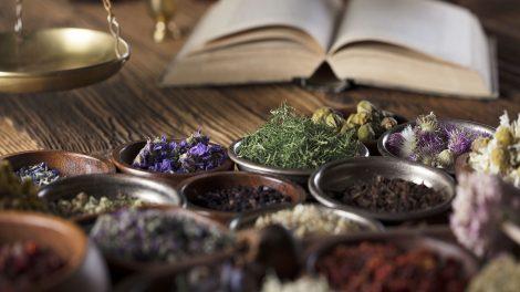 ezotéria fahéj mágia mágikus növényhatározó menta ványik dóra