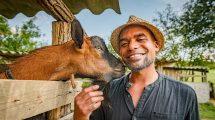 almáskeresztúr b. molnár márk guinea jamaicai életérzés kaba lamine kecskefarm kecskék pónicsikó