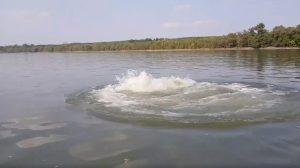 barabás zoltán bugyborékolás duna dunai loch ness-i szörny folyó levegőbuborékok óriás lény papp noémi vízi szörny