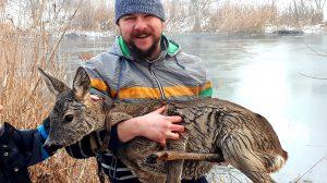 b. molnár márk bónyai benjámin bónyai gusztáv családi mentőakció jég mentés ős-sárvíz tanösvény őzike segítségnyújtás
