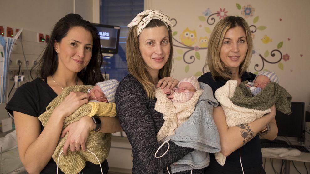 anyaméh b. molnár márk egypetéjű ikrek embrió hármas ikrek ikerterhesség kismamák sportkarrier ultrahang