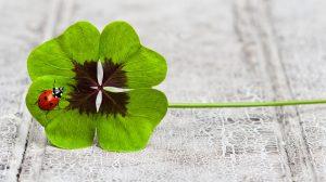 fortuna karola jósnő kitartás lottószelvény mágia szerencse szerencsehozó gyertyák szerencsés fordulat türelem ványik dóra varázslat