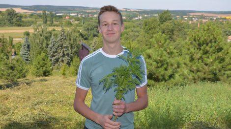 allelopátia allergia bacher józsef biológia tábor debreczeni csilla gyomirtó hrubos gergő kártékony növény kísérlet középiskolás növények életfolyamatai országos elismerés parlagfű természetes gyomirtó