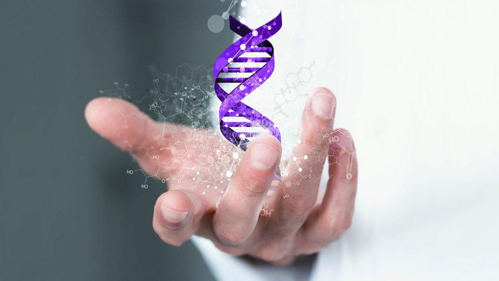 adatbázis DNS-teszt dr. egyed balázs egyetemi oktató földrajzi régiók gének genetikai történet nemzetiségek népcsoportok otthoni teszt populációgenetikus szakértő ványik dóra