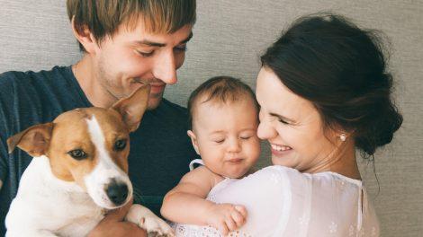 háziállat horváth ivett kisállat klinikai szakpszichológus kutya négylábúak örökbefogadás vermes nikolett