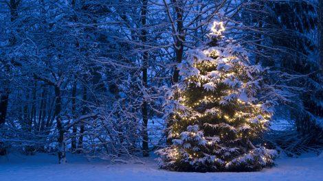 babonák betlehem disznó ezotéria gyertya kar karácsony karácsonyi menü lencse malac pezsgő szellemek szerencse szilveszter újév ványik dóra