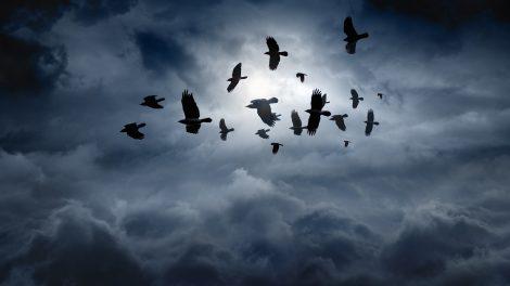 borzongás eltűnések ezotéria időutazók megmagyarázhatatlan jelenségek ványik dóra