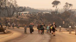 adakozás áradások ausztrália b. molnár márk bozóttüzek erdőtűz eső feith réka füst időjárás kangaroo island katasztrófa kitelepítés maszk tűzoltó újságíró victoria állam vöröskereszt