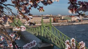 budapest fotográfus járvány karantén koronavírus molnár fruzsina pánikvásárlás rizsavi tamás
