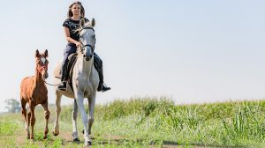 borjú születése debreczeni csilla folyó kis-rába kiscsikó kiss-m. vencel lovak mezőgazdasági szakközépiskola önkéntes tűzoltó sodrás soós kitti tanya tehenek trágyázás
