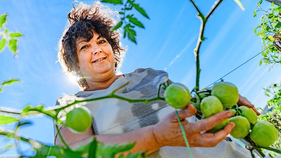 argentína autóbaleset brazília csendes ildikó kertészkedés madagaszkár modell modellügynökség modellversenyek nemzetközi szépségversenyek paradicsom szépségipar termesztés üzletasszony