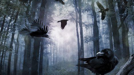 ezotéria hessdalen-fények jersey ördög rejtélyek szellem ványik dóra voynich-kézirat