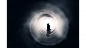 állatok ezotéria hatodik érzék különleges képességek kutyák megérzések ványik dóra