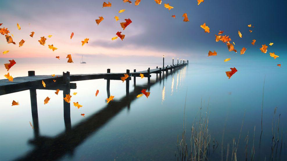 elengedés ezotéria hála kiegyensúlyozottság napfény spirituális ványik dóra varázslat