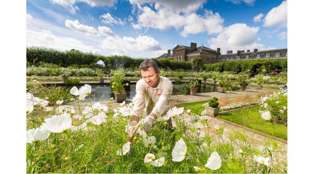 belicza bea cukrász cukrásztanfolyam diana hercegné egyesült királyság kensington-kertek kensington-palota kertész kulináris művészetek lukács richárd növényismeret szakács talajmunkák harry herceg